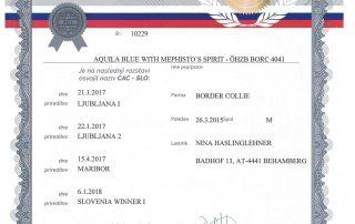 Dastan Slowenischer Champion