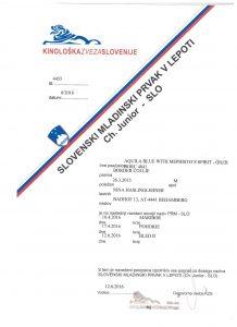 Dastan Slowenischer Jugendchampion