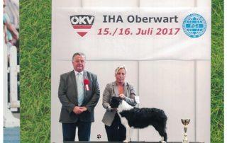 Show Solana IHA Oberwart